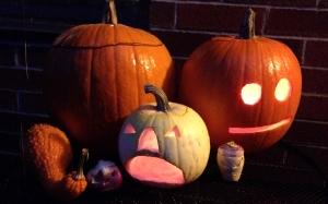 2013 pumpkins